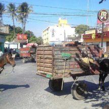 Piden carretoneros de Juchitán, Oaxaca, centro de transferencia