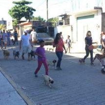 Con caminata canina buscan sensibilizar a la poblacion sobre el cuidado de las mascotas