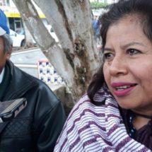 Indígenas, desatendidos por autoridades: Consejo Indígena de Gobierno