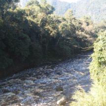 'Enferma' a pobladores los olores del río Blanco