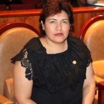 Diputada Neli Espinosa, impulsa iniciativa que busca sancionar la violencia de género en redes sociales