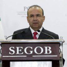 Segob no mete las manos en proceso electoral: Navarrete