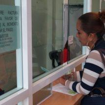 Empresarios muestran interés en pagar sus licencias e impuestos