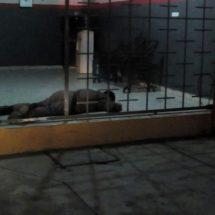 Matan durante asalto a despachador de gasolinera en Cosamaloapan