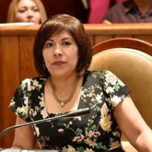 Desde el Congreso, trabajo en políticas públicas a favor de las mujeres: Hilda Luis