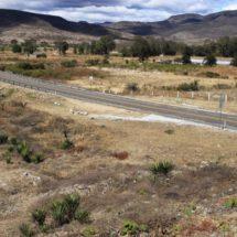 Super al Istmo, atropello ecológico en Oaxaca