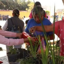 Invitan al tercer trueque de plantas en Xoxocotlán