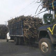 'Caducan' camiones cañeros de la región