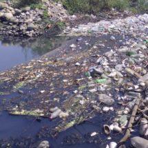 Acaban ingenios con los ríos de la región