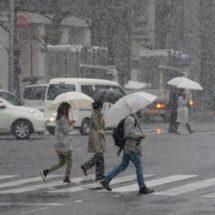 ¡Prepárate! frente frío 42 traerá tormentas y tornados en el país
