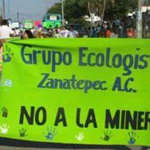 """Celebran el séptimo festival infantil con el lema """"Sí a la vida, no a la mina"""" en Zanatepec"""