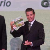 Ningún país produce todo lo que consume: Peña Nieto