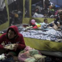 Suman 74 peticiones de asilo en Caravana