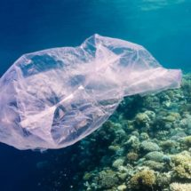 Eliminarán las bolsas de plástico en Huatulco