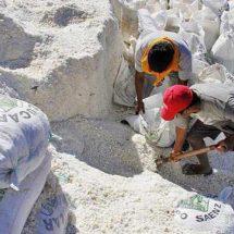 Daña Pemex 70% de la producción de sal en Salina Cruz, Oaxaca