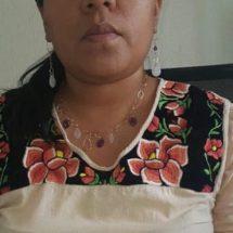 Rechazan magistrados violencia política denunciada por Síndica de Pinotepa