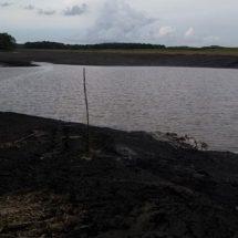 De manera increíble se recupera la laguna Chakanbakán de QRoo