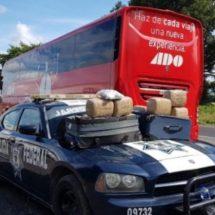 Decomisan 41 kilos de mariguana en la autopista Tinajas-Cosamaloapan