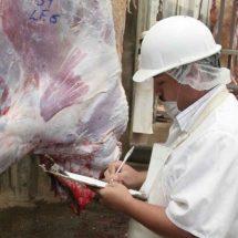 Riesgos sanitarios, por falta de rastro TIF en el Istmo, Oaxaca