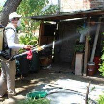 Gobierno de Santa Lucía y Secretaría de Salud trabajan en conjunto para evitar enfermedades transmitidas por vectores