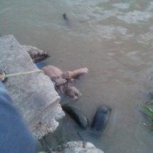 Encuentran a masculino flotando en rio de Coatza