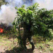 Narco, enredado en huachicol en Oaxaca