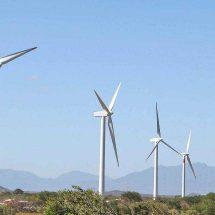 Para UPERI, «justo» el fallo de la Corte sobre proyecto eólico en el Istmo, Oaxaca