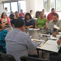 Analiza Comisión de Gobernación elección de Autoridades Auxiliares