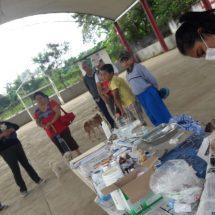 Gobierno de Tuxtepec continúa campaña de esterilización de mascotas