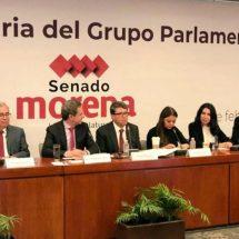 De continuar, reforma educativa causará daños irreparables: SEP