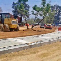 Sitibús de Oaxaca: buscan revivir al elefante blanco