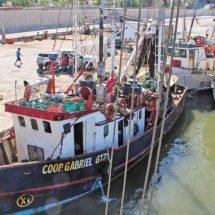 Anclada, 60% de flota camaronera en Salina Cruz, Oaxaca
