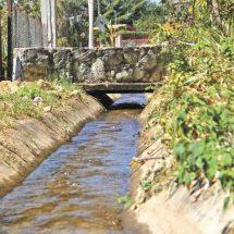 La presencia tardía de lluvias durante 2018 y las altas temperaturas que se han empezado a sentir durante la segunda mitad de este mes de febrero encienden los focos de alarma en el municipio de San Agustín Etla, desde donde, de manera permanente, el agua realiza una travesía de 14 kilómetros para ayudar a abastecer a la ciudad de Oaxaca y nueve municipios conurbados a la capital.  El aforo promedio de agua que llega a la capital oaxaqueña es de 200 litros por segundo, pero, de acuerdo con el presidente de Bienes Comunales de San Agustín, Erick Pérez Ruiz, cuando es temporada de lluvia puede aumentar a 250 litros por segundo y, en época de estiaje como ahora, disminuir a cien litros por segundo del agua que es enviada al cárcamo capitalino para su distribución a los usuario del Servicio de Agua Potable y Alcantarillado de Oaxaca (Sapao)