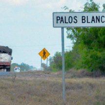 La desaparición de más de 40 migrantes en México ilustra la impunidad del crimen en el país