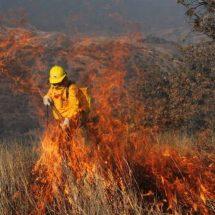Consumen incendios campos de Oaxaca