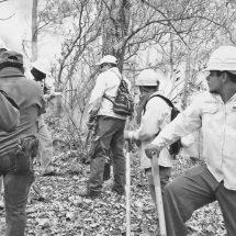 Combaten el fuego en Los Chimalapas
