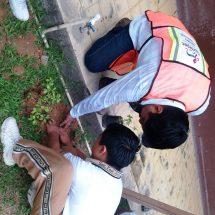 Gobierno de Tuxtepec y Secundaria José Vasconcelos realizaron reforestación