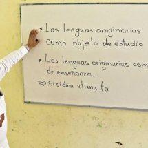 Etnocidio: educar sin lenguas originarias