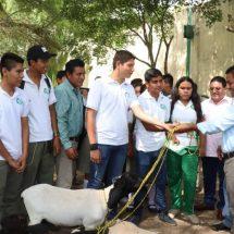 Impulsa la preparación de los jóvenes… Entregó Dávila animales de granja en el CBTF 03 de Tuxtepec