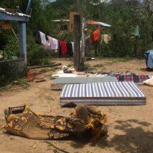 Pérdidas materiales dejó una tromba la madrugada de este lunes en la población de La Palma de Coyul