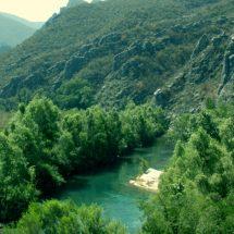 Existen 60 mil hectáreas de áreas protegidas en la Cuenca
