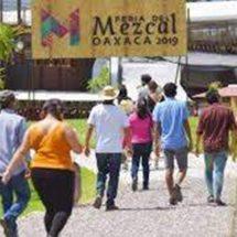 Instalan alcoholímetro voluntario al exterior de la Feria del Mezcal