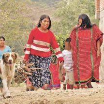 Lenguas indígenas, patrimonio intangible