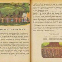 Oaxaca da lecciones en libros de texto