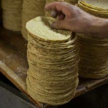 Advierten sobre presencia de agrotóxicos en tortillas de maíz