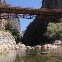 Boquerón de Tonalá, 11 años como área natural protegida