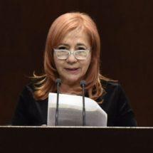 No titubearé si debo emitir recomendación al presidente: Piedra Ibarra