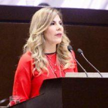 Diputados piden comparecencia virtual de titular de Conacyt