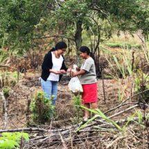Llega la ruta de la esperanza a la Sierra Mazateca