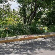 Tras muerte de director..Se aquebrantan servicios básicos en Tuxtepec